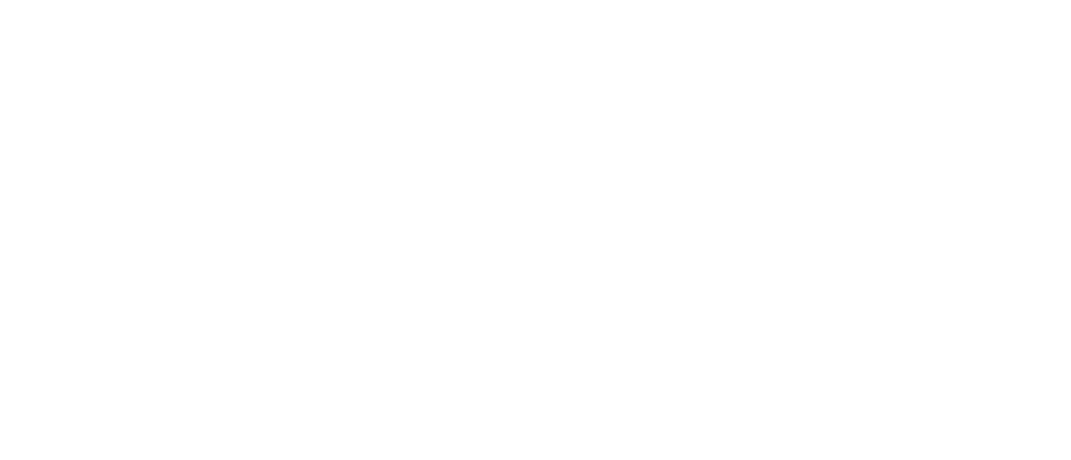 RBU-Germany Logo